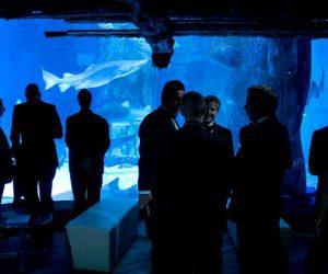 GOSH Charity Event - London Aquarium