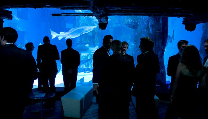 Great Ormond Street Hospital Charity Event – London Aquarium