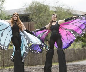 Croxley Park Summer Fete | Stilt Walkers with butterfly wings